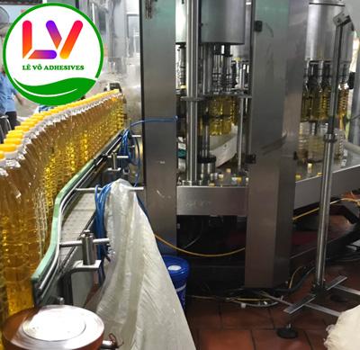Quy trình dán nhãn chai dầu ăn bằng keo nóng chảy hotmelt PSA