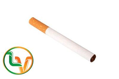 Keo hotmelt dán đầu lọc thuốc lá